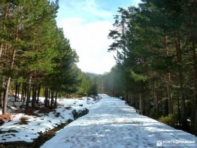 Picos Urbión-Laguna Negra Soria;viajes a medida parque natural del estrecho ocejon juniperus thurif